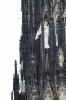 Köln2015_180